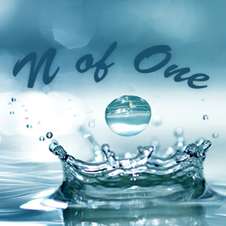 N of One:  The False Assumption of Admitting Errors Artwork